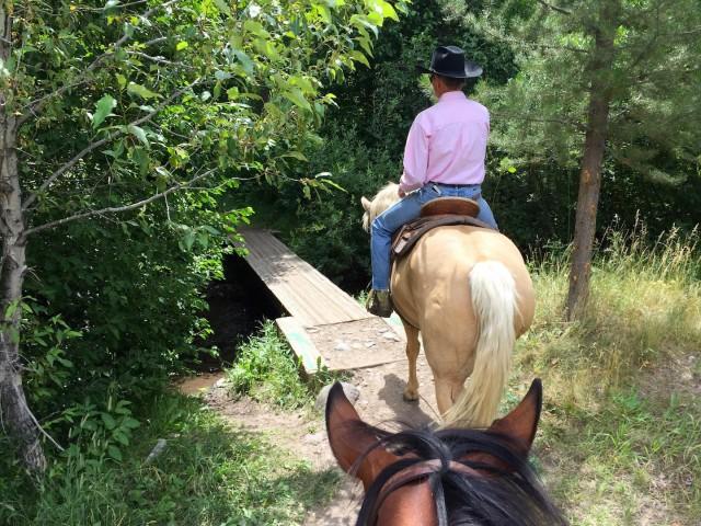 Oregon Gulch to Fox Creek