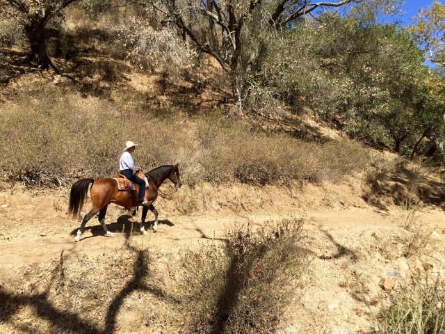 Biddle Ranch
