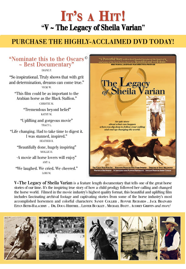 The Legacy of Sheila Varian - DVD poster