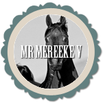 Mr Mereeke V