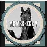Mr Mereeke V