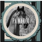 PA Marco