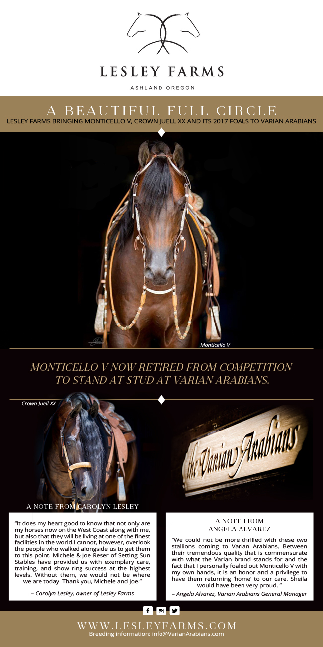 Monticello V to stand at Varian Arabians
