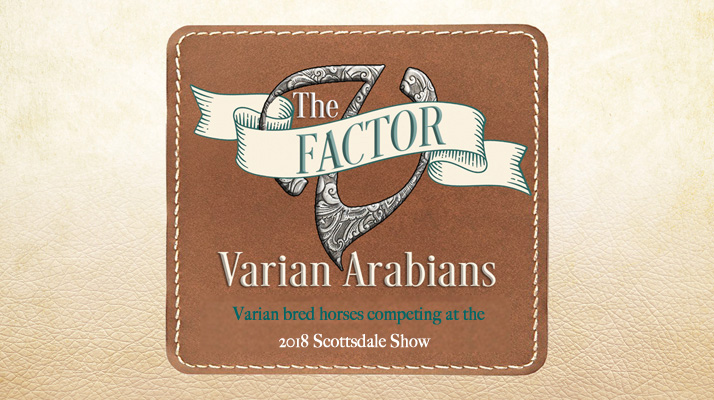 The V Factor: Varian bred horses at the 2018 scottsdale show