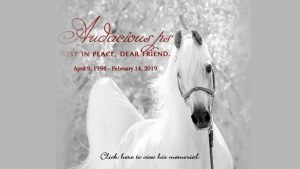 Audacious ps - Rest in Peace