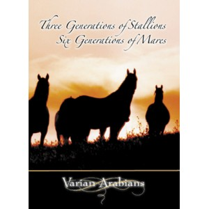 Three Generations of Stallions, Six Generations of Mares